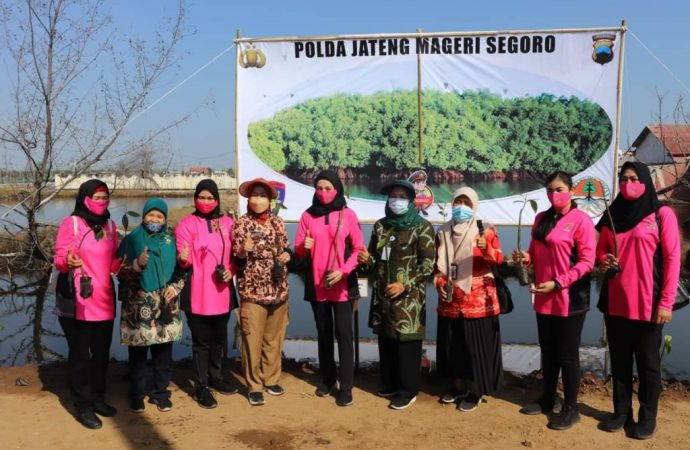 Bupati : Mageri Segara Selamatkan Pantai Brebes